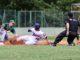 Montefiascone Baseball